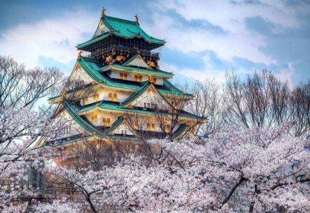 Vi vu tít mù Osaka Nhật Bản